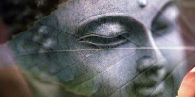 Manual de meditatie online