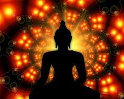 Meditatie si unde cerebrale cu Stefan Pusca
