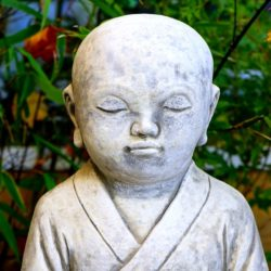 15 secrete al meditatiei pentru incepatori de Stefan Pusca