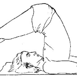 Terapia prin meditatie de Stefan Pusca pozitia plugului (Halasana)
